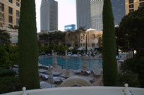 Bellagio Pool Pictures